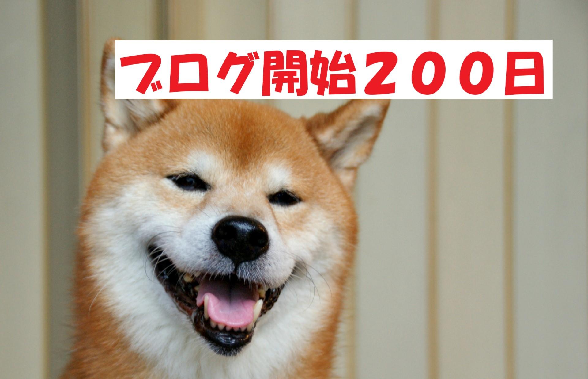 ブログ開始200日